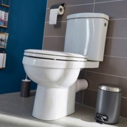 remplacer des WC