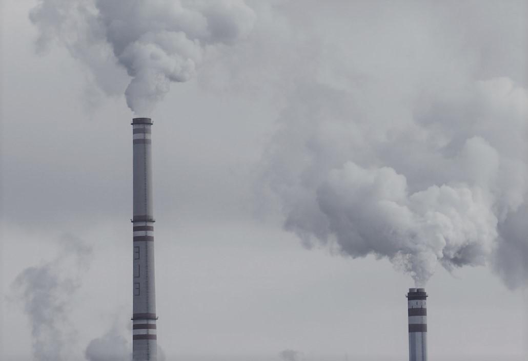 Tokia Saifi: la génération fossile